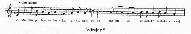 wizajny-66